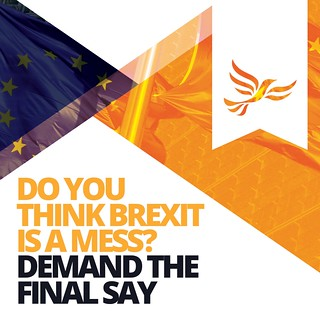 Do you think brexit is a mess? Demand the final say.